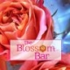 Dori Eldridge - The Blossom Bar Aromatherapy and Creativity Workshops